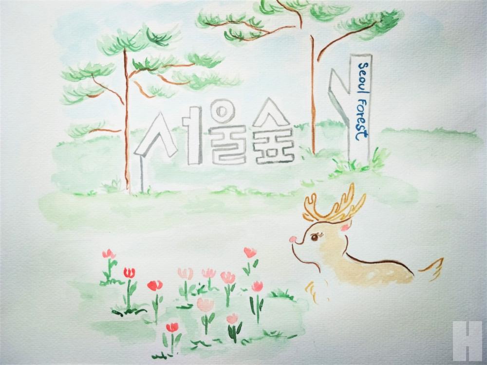 ตามรอยไอดอล เกาหลี