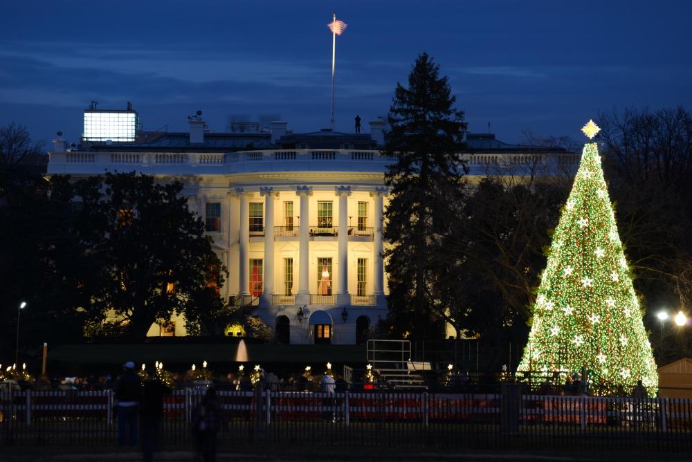 X'mas tree at White House