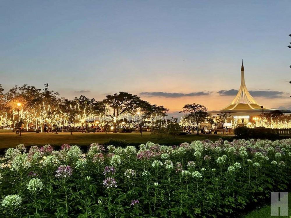 ปีละครั้งเที่ยวงานพรรณไม้งามอร่าม สวนหลวง ร.๙ ชมดอกไม้บานสะพรั่งทุกแปลงกว่า 7 แสนต้น